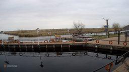 Holbina Delta Dunarii